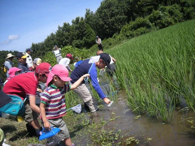 NPO法人 おおいた有機農業研究会の写真