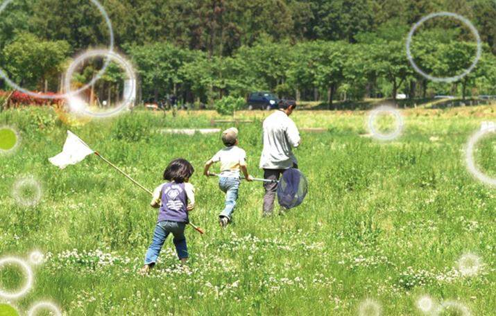 公益財団法人日本生態系協会の写真