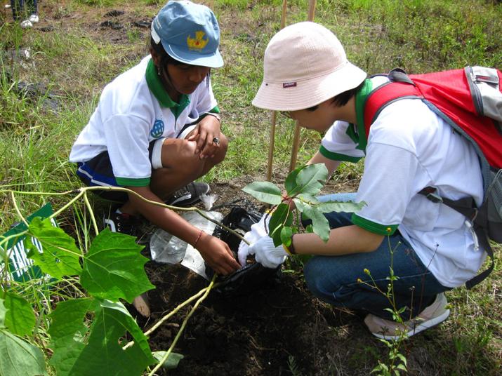 特定非営利活動法人アジア植林友好協会の写真