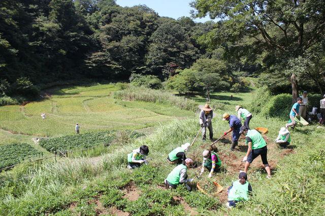 認定NPO法人自然環境復元協会の写真