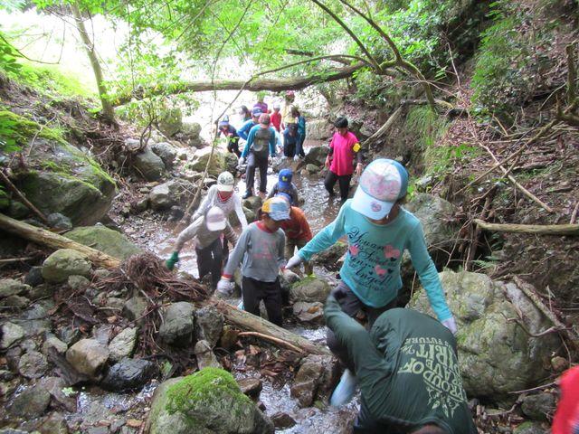 兵庫県立ささやまの森公園の写真