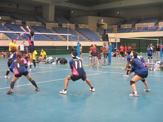 特定非営利活動法人日本混合バレーボール協会の写真