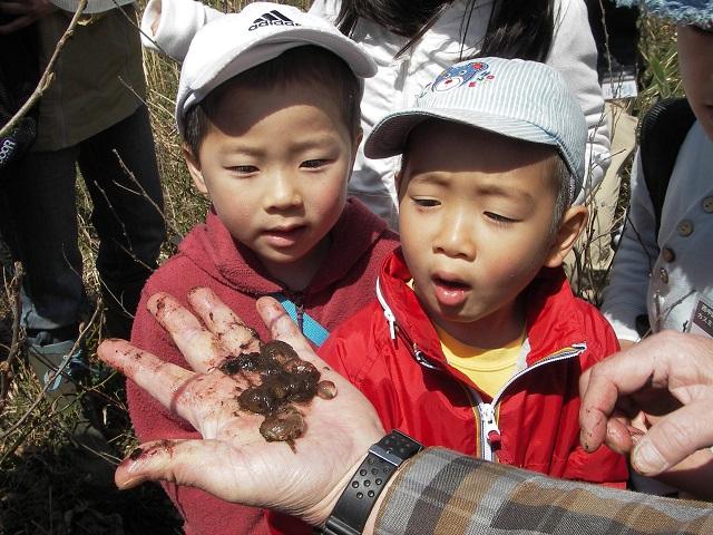 認定特定非営利活動法人西中国山地自然史研究会の写真
