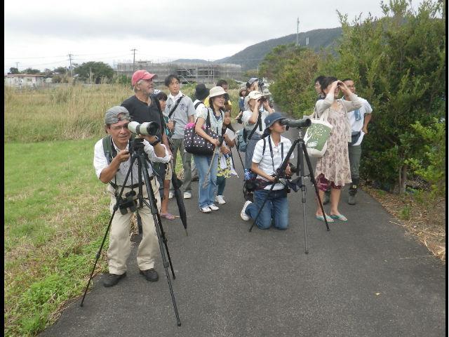 NPO法人 奄美野鳥の会の写真