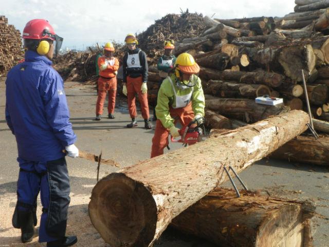 公益財団法人鳥取県林業担い手育成財団の写真